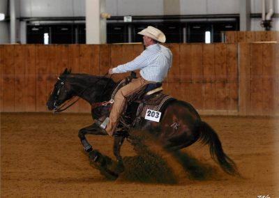 Gillis Horse 1